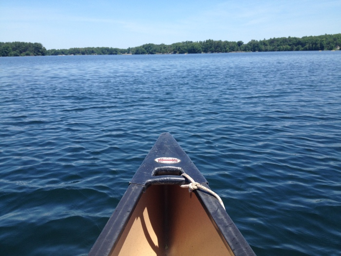 View from the canoe at Spot Pond